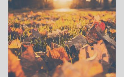 Quando il cambio di stagione influisce sull'umore